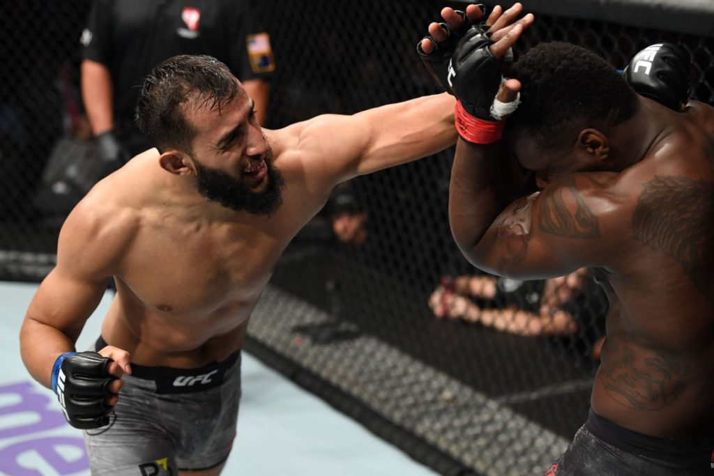 UFC Fight Night 162 - Dominick Reyes