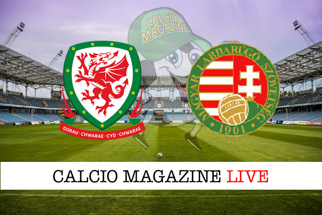 Galles-Ungheria, partita da dentro o fuori; pronostici delle gare del 19 novembre 2019.