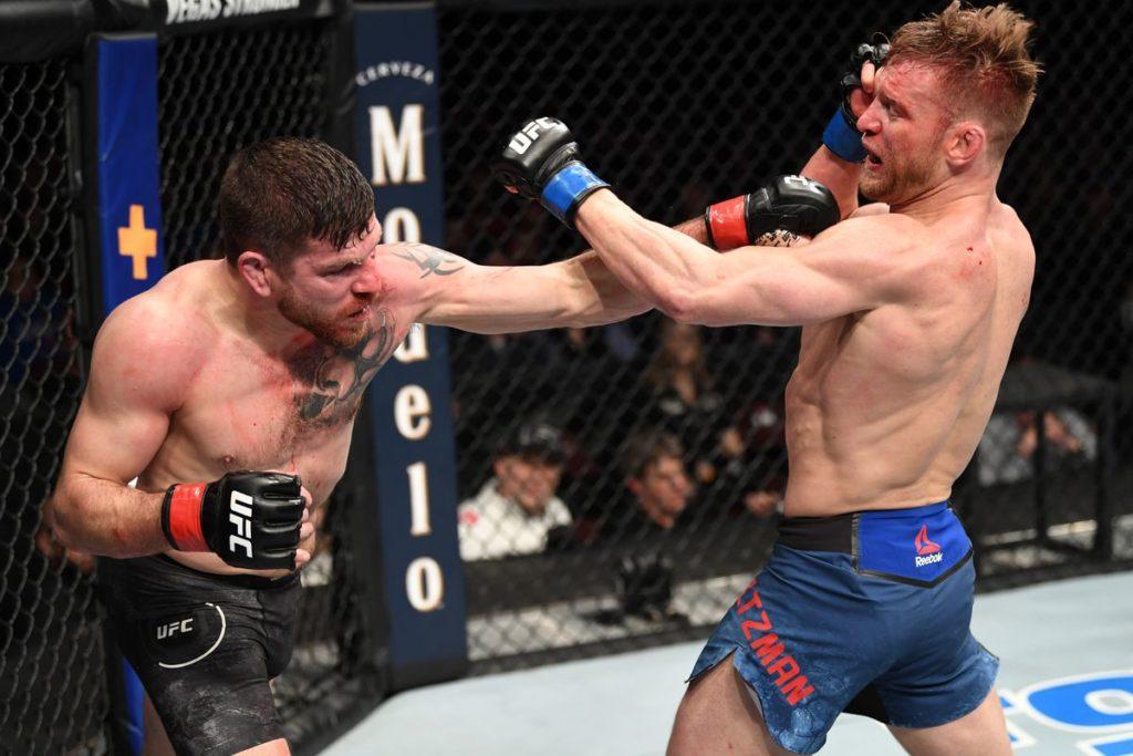 UFC Fight NIght 167 - Fight of the Night