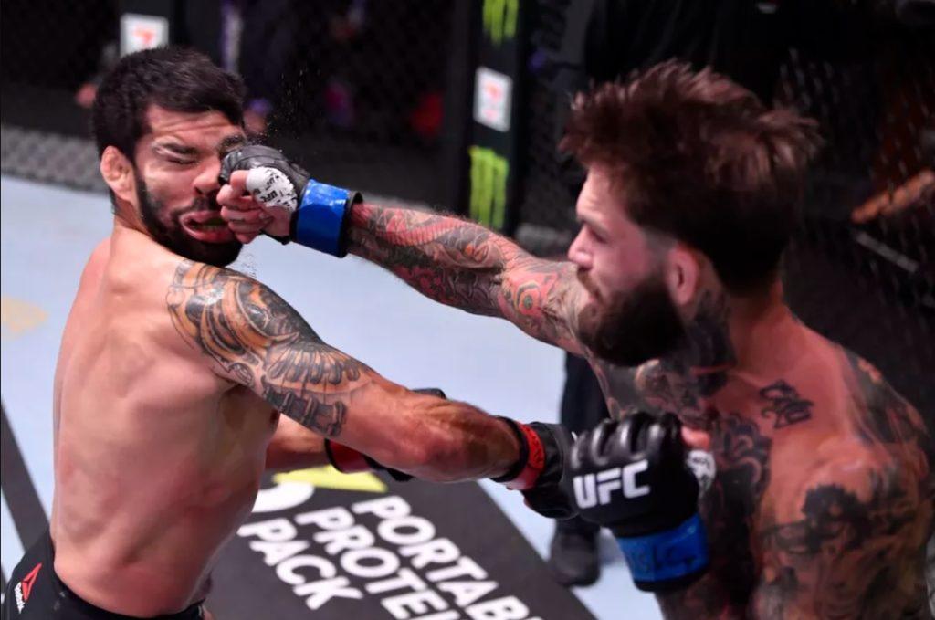 UFC 250 - Cody Garbrandt