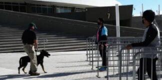 Miami Heat utilizzerà cani anticovid