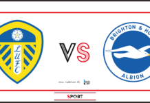 leeds united-brighton