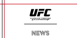 UFC NEWS: estate piena
